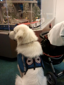Watching the train at the children's hospital.